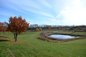 A scenic view of the Great Stream Commons in Allenwood on Monday.